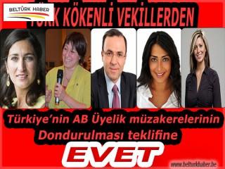 TÜRK KÖKENLİ VEKİLLERDEN TÜRKİYE ALEYHİNE 'EVET'